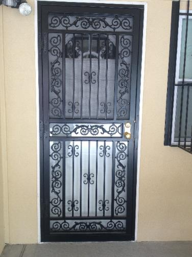 Security Doors Steel Doors Front Doors Storm Doors